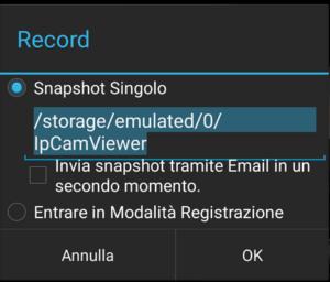 videosorveglianza record
